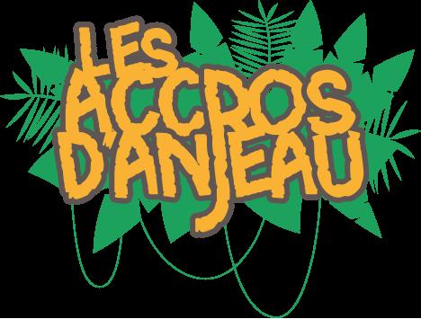 les_accros_danjeau_titre